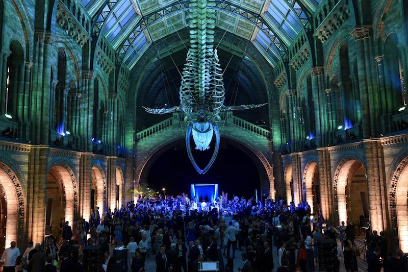 globedge-travel-london-natural-history-museum-lates