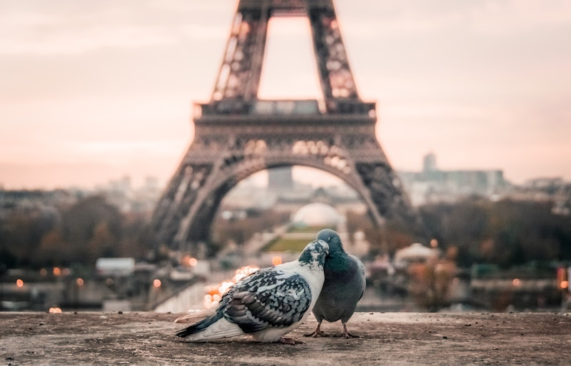 globedge-travel-paris-eiffel-tower-love